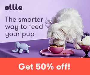 ollie pet food discount