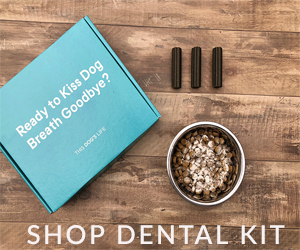 dogs life Dental Kit